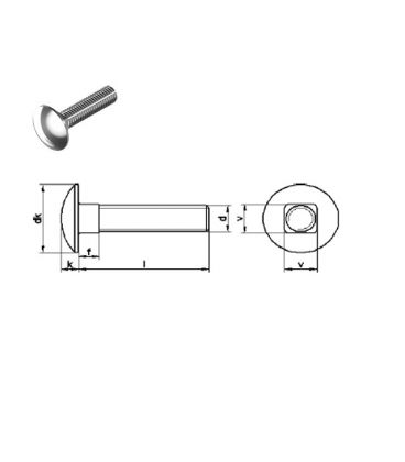Mushroom Head Square Neck Screw (Cup Square / Coach bolts) M6 x 50 mm A4 Stainless Steel DIN603