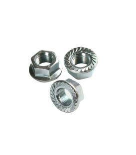 M8 - A4 (T316) Stainless Steel Serrated Flange Nut - DIN 6923