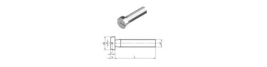 Slotted Cheese head machine Screws (DIN 84) Stainless Steel