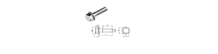Hexagon Head Bolt with Flange (No serration) Din 6951 -  Stainless Steel